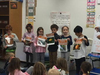 Students Learn About Life Cycle of Pumpkins