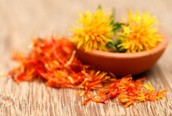 Is There any Difference Between Regular Safflower Oil and CLA Safflower OIl?