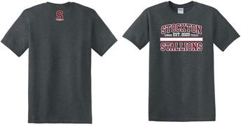 $10 Grey T-Shirt