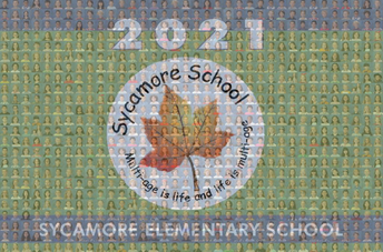 Purchase mosaic picture
