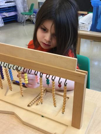 The Montessori Lens