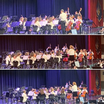 Orchestras Shine at String Fest