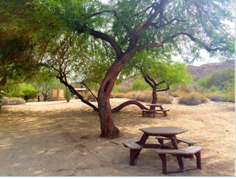 Cahuilla Hills Park Day and Hike