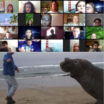 Third Graders Zoom With Marine Biologist