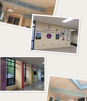 TES is popping with color!