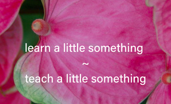 Crowdsourcing Delight: Learn a Little Something/Teach a Little Something