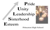 PULSE: Young Women's Leadership