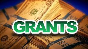 1.  Quality Science & Mathematics Grant Program (QSM)- $1000