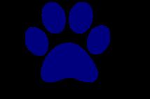 Panther Pride Winner - 3rd grade