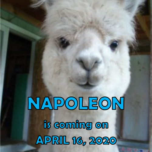 We are celebrating Global Youth Service Day (GYSD) on Thursday, April 16, 2020    NAPOLEON IS COMING TO VISIT!!