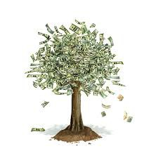 Who forgot to water the money tree?