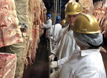 Meats Evaluation Team