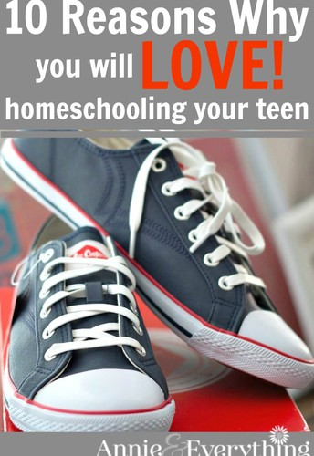 """10 Reasons Why You Will LOVE Homeschooling Your Teen"""