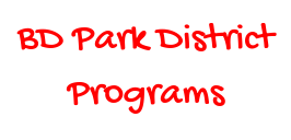 Bloomingdale Park District -  New Flyer Added