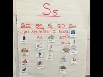 Class Chart- Letter S