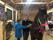 Students visiting a horse barn.