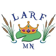 Lakes Area Royale Faire