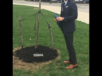 Dr. Ben Buchanan admires the Hall of Fame tree planted in the front of the building.