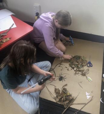 Rm 11 making a 'Trapdoor Spider' nest