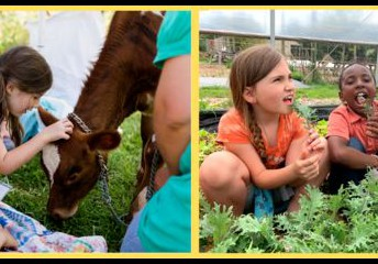 June 25th & July 23rd: Farm Explorers (4th Fridays)