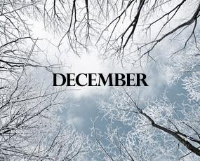 December Lunch Menu