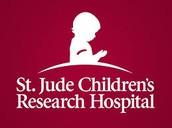 2017 DMS St. Jude Children's Hospital Fundraiser