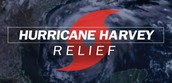 Harvey Relief & Support Information