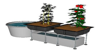 5 Essential Elements For Aquaponic Supplies Near Me
