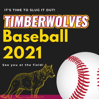 Baseball Begins!