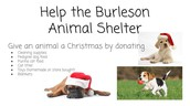 Food Drive for Animal Shelter