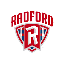 Radford Virtual Application Review