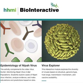 Howard Hughes Medical Institute Biointeractive site screenshot