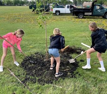 students plant tree