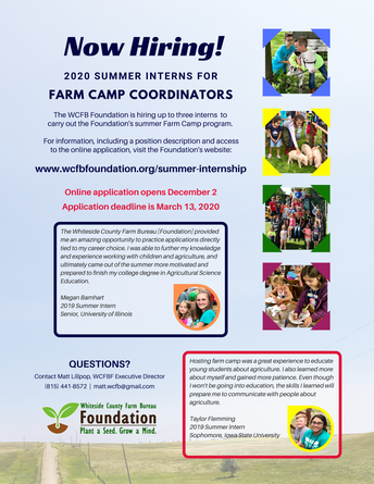 WCFBF Hiring Summer Interns