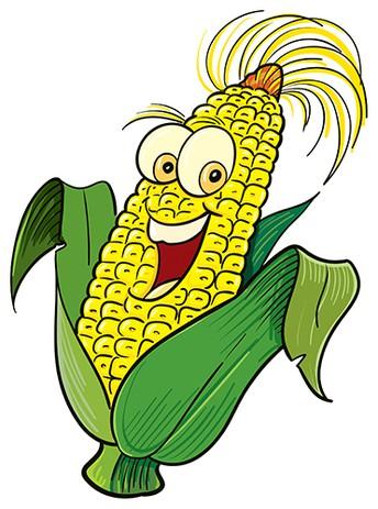 Corn Roast / L'Épluchette