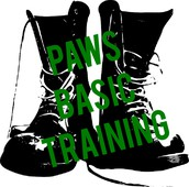 PAWS Basic Training (New Teacher Check ins)
