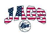 Patriotic Jag Shirts