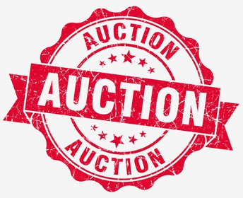 Call for Auction Donations!