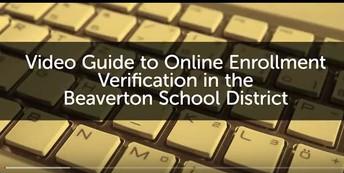 Verify Information Online
