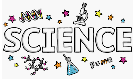 8th Science