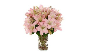 Ten Shocking Facts About Thinking Of You Flowers