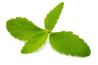 Natural Stevia Sweetener