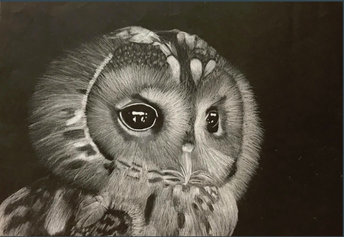 Marie Murphy Artists Recognized in Scholastic Regional Competition