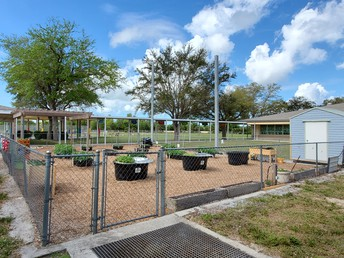 Manatee Garden