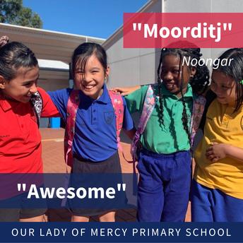 Moorditj (Noongar: Awesome)!