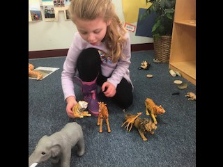 Imaginative play with animals.