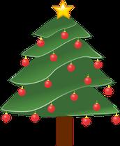 Mitten Tree Information