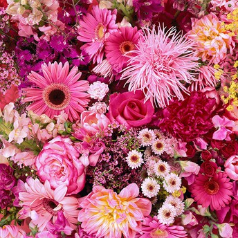 Now Is The Time For You To Know The Truth About Birthday Flowers