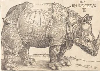 Albrecht Durer's Rhino Print