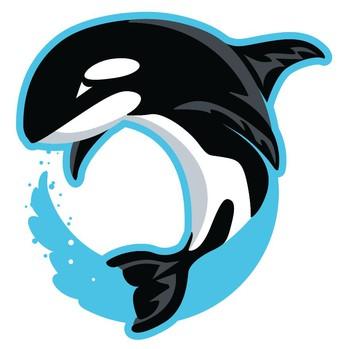 Go WAVA Orcas!